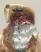 Santa's Face Closeup: Jingle Bells Santa