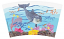 Dolphin Tervis Wrap Image
