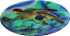 Guy Harvey Sea Turtle Platter