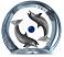 Dolphin Planet Lucite Sculpture