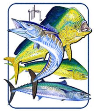 Bull Dolphin, Wahoo, Kingfish Magnet