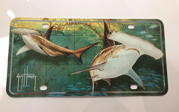 Hammerhead Sharks Auto TAG