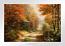 A Walk Down Autumn Lane Paper Edition