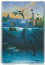 Dolphin Rides Magnet