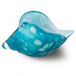 Ocean Blue Seashell