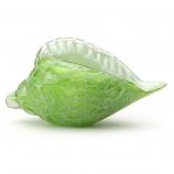Kelp Green Seashell