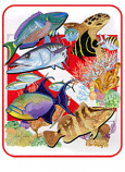Coral Reef Fish Magnet