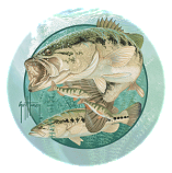 Largemouth Bass Coasters