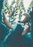 Sea Lion Kelp Forest Pin