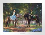 Romance Awakens Cinderella Paper Edition