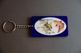 Redfish Key Chain