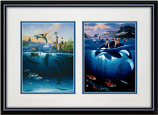 Dolphin Rides & Whale Rides Framed Print