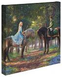 Romance Awakens Cinderella Canvas Wrap