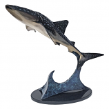 Whale of a Shark Bronze Sculpture